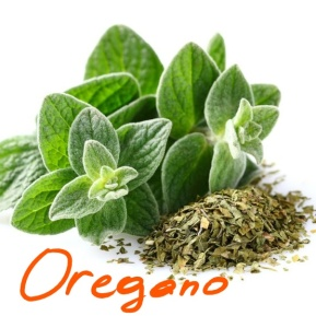 oregano_Ink_LI