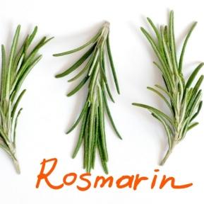 rosmarin_Ink_LI