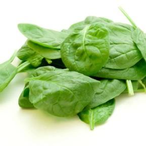 spinat mangold